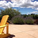 Bring your picnic and enjoy our patio over looking the vineyard.