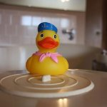The First Mate Rubber Duck is here to Welcome you to River House Inn