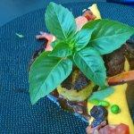 Joues de cochon confites et sa polenta cuite cremeuse et snacké