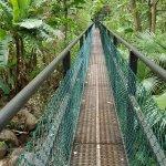 8 minutes away-- Iao Needle --Wailuku River hike