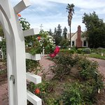 Gardens at Luther Burbank Home