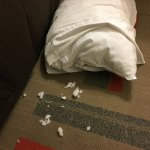 Torn Pillow
