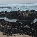 Foto de Sea Otters Lodge