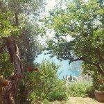 Associazione La Selva Yoga Retreat Foto