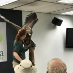 Photo de Alaska Raptor Center