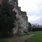 Photo de Thornbury Castle and Tudor Gardens