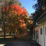 Exterior of Riverside Studio in autumn