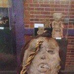 Preserved Mayan head