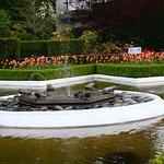 Garden pix