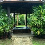 Secluded spa area for relaxation and contemplation