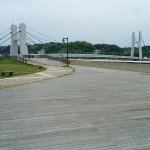 Rosa Rugosa Park-bild