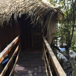 Photo of Juma Amazon Lodge