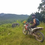 Krabi jungle ride
