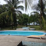 Pool - Hotel Tortuguero Beach Front Photo