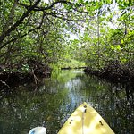 Photo de Tranquilo Bay Eco Adventure Lodge