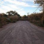 Foto de Domos y Eco Camping Los Abuelos