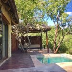 Simbambili Game Lodge รูปภาพ