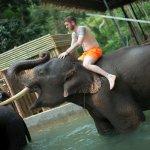Photo de Kok Chang Safari Elephant Trekking