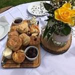 Cream tea on arrival for our guests