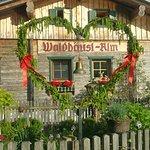 Waldhaeuslalm
