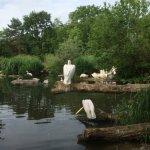 Photo de Zoo Basel