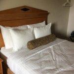 Foto di Bayside Resort Hotel