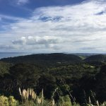Views on the road on Waiheke Island