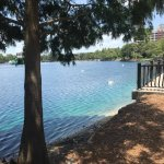 View of Lake Eola