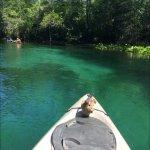 Photo de Discovery Kayak Tours