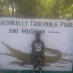 a about to enter Crocodiles land