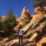Hoodoos near Tropic Trail