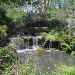 The waterfall near the Oriental Garden