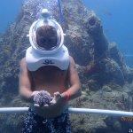 Holding a sea urchin