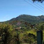 Plantations aroung road to Kiliyur falls