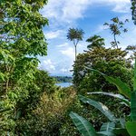 Photo de La Loma Jungle Lodge and Chocolate Farm
