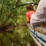 A long and insightful boat ride deep into the jungle to reach the bat cave