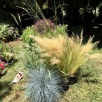 Photo of Etna Botanic Garden
