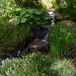 There are small water features throughout the gardens--lovely surprises!