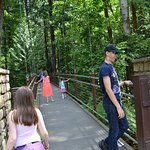 The Suspension bridge was awesome.  This was the favorite spot of the day for my kids.