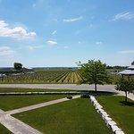Trius Winery Restaurant
