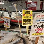 Catfish for sale - PENS FANS ONLY! June 2017 during Stanley Cup Championship games