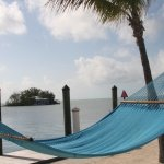 these hammocks encourage one to relax under the sun