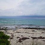 Foto de Castaway Cay