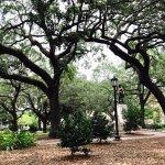 Foto di Savannah Belle Walking Tours