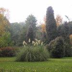 Photo of Jardin Botanico de la Universidad Austral de Chile