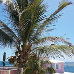 Guana Bay Beach Villas