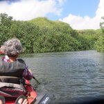 What a beautiful view as we paddled on the river!