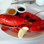 3-star dinner, Boston lobster