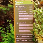 Fir Trail Marker indicating other trails and loop distances
