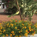 Photo de Coronado Motor Hotel-Yuma